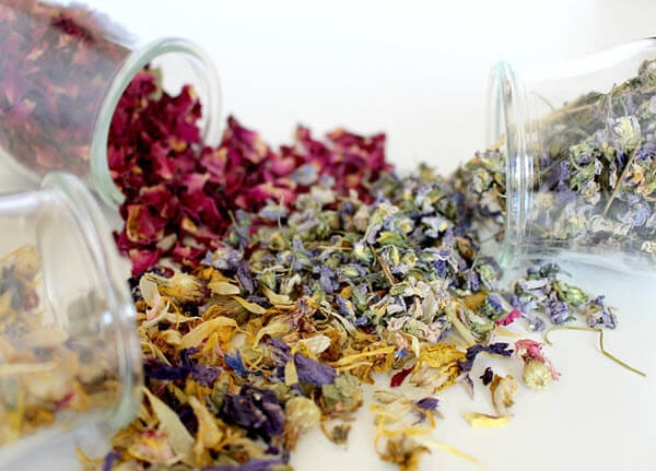 Liečivé bylinky