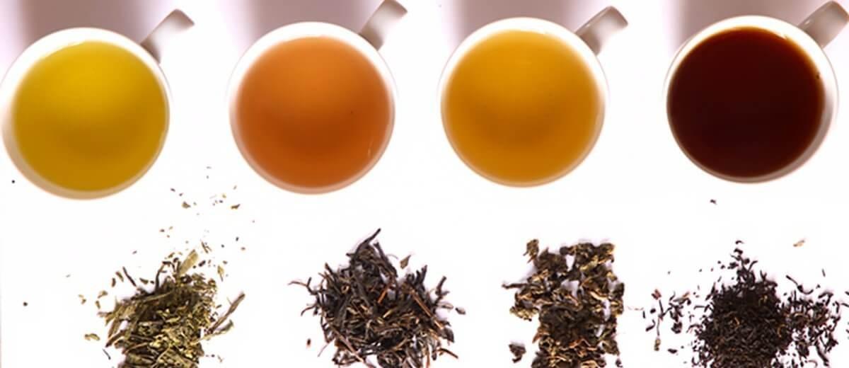 Tajomstvo čaju: ODHALENÉ!