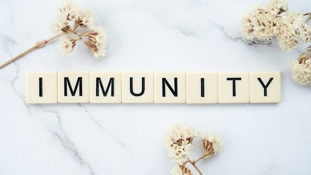 Top 5 byliniek na imunitu